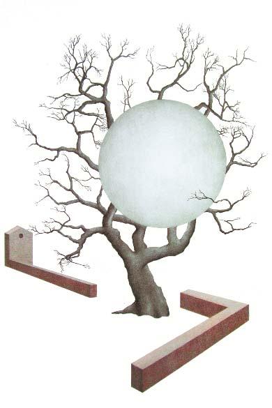Gli alberi e le presenze